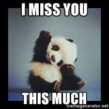 I Miss You meme Funny/Funny Miss You Quotes - Quote Memes