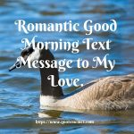 Romantic Good Morning Text Message to My Love
