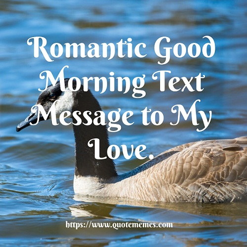 Morning text msg