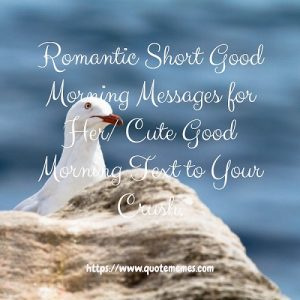 Romantic Short Good Morning Messages for Her/ Cute Good Morning Text to Your Crush