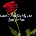 Cutest I Miss You My Love Quote