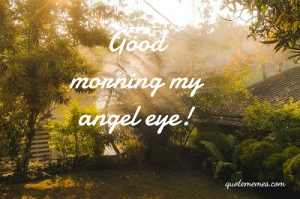Good morning angel eye